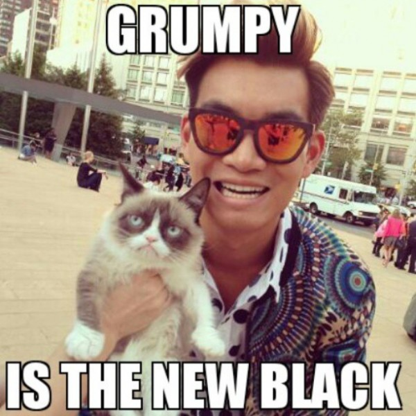 """Meme-d"" with Grumpy Cat"