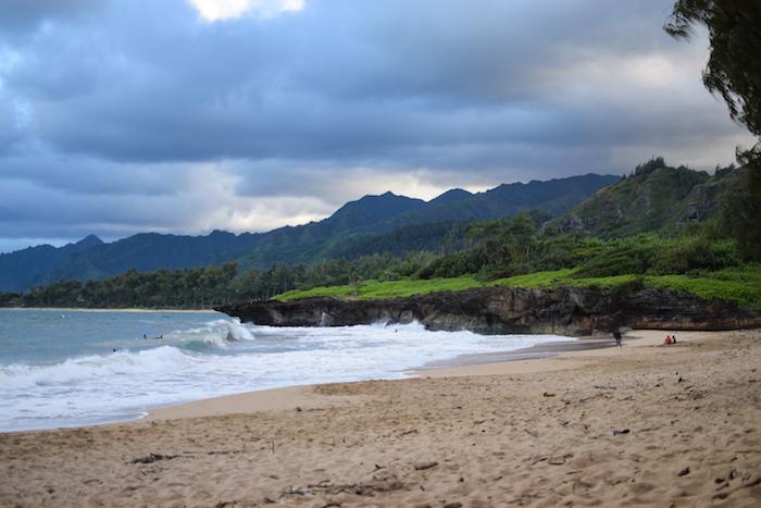 alexander liang hawaii 10