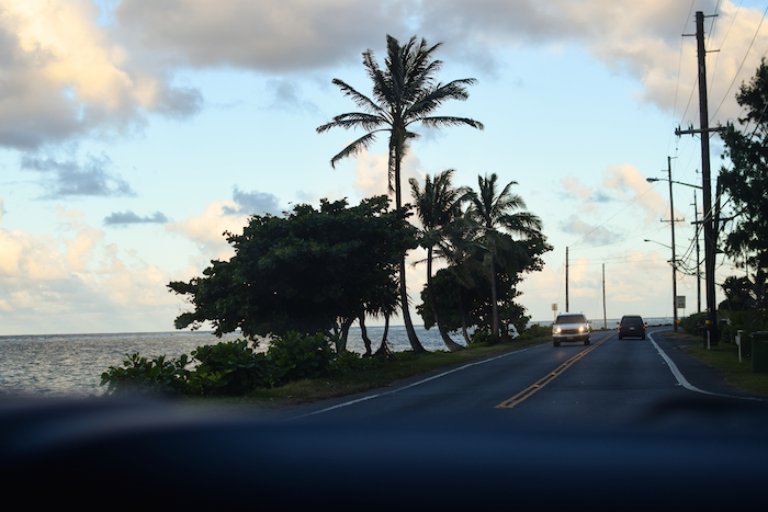 alexander liang hawaii 14