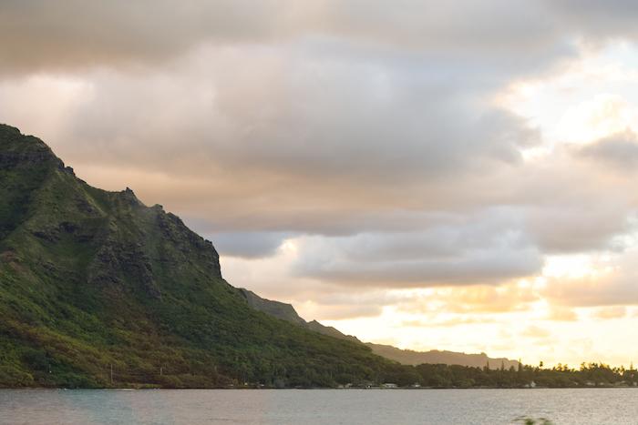 alexander liang hawaii 15