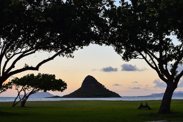alexander liang hawaii 16