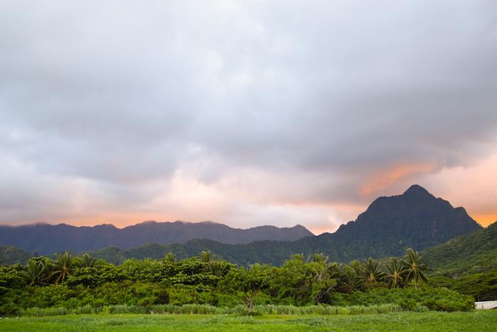 alexander liang hawaii 17