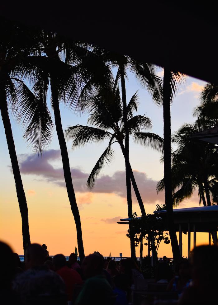 alexander liang hawaii 19