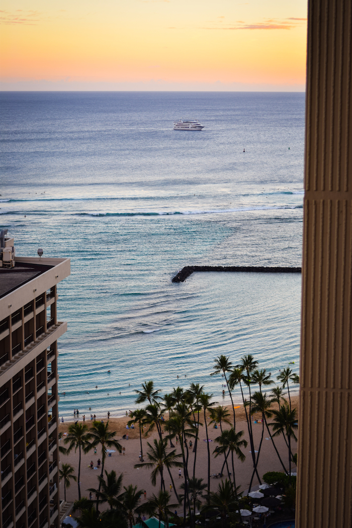 alexander liang hawaii 22