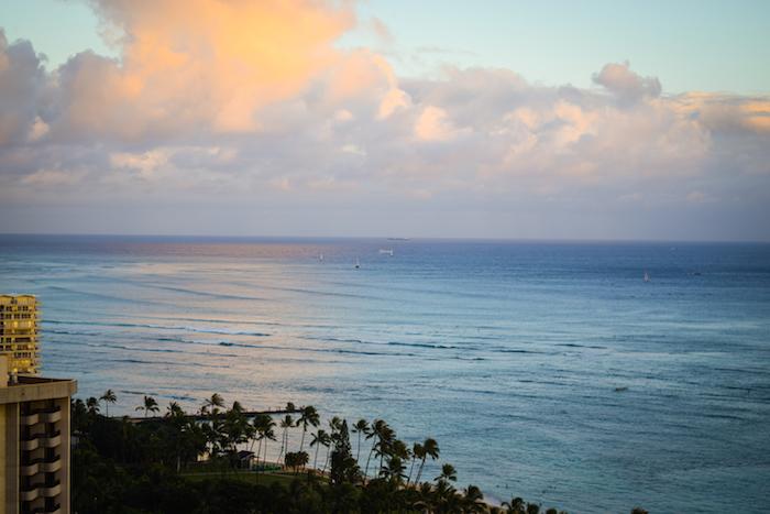 alexander liang hawaii 23