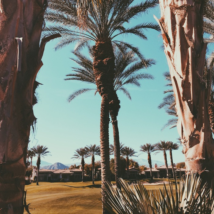 indian-ridge-golf-palm-desert