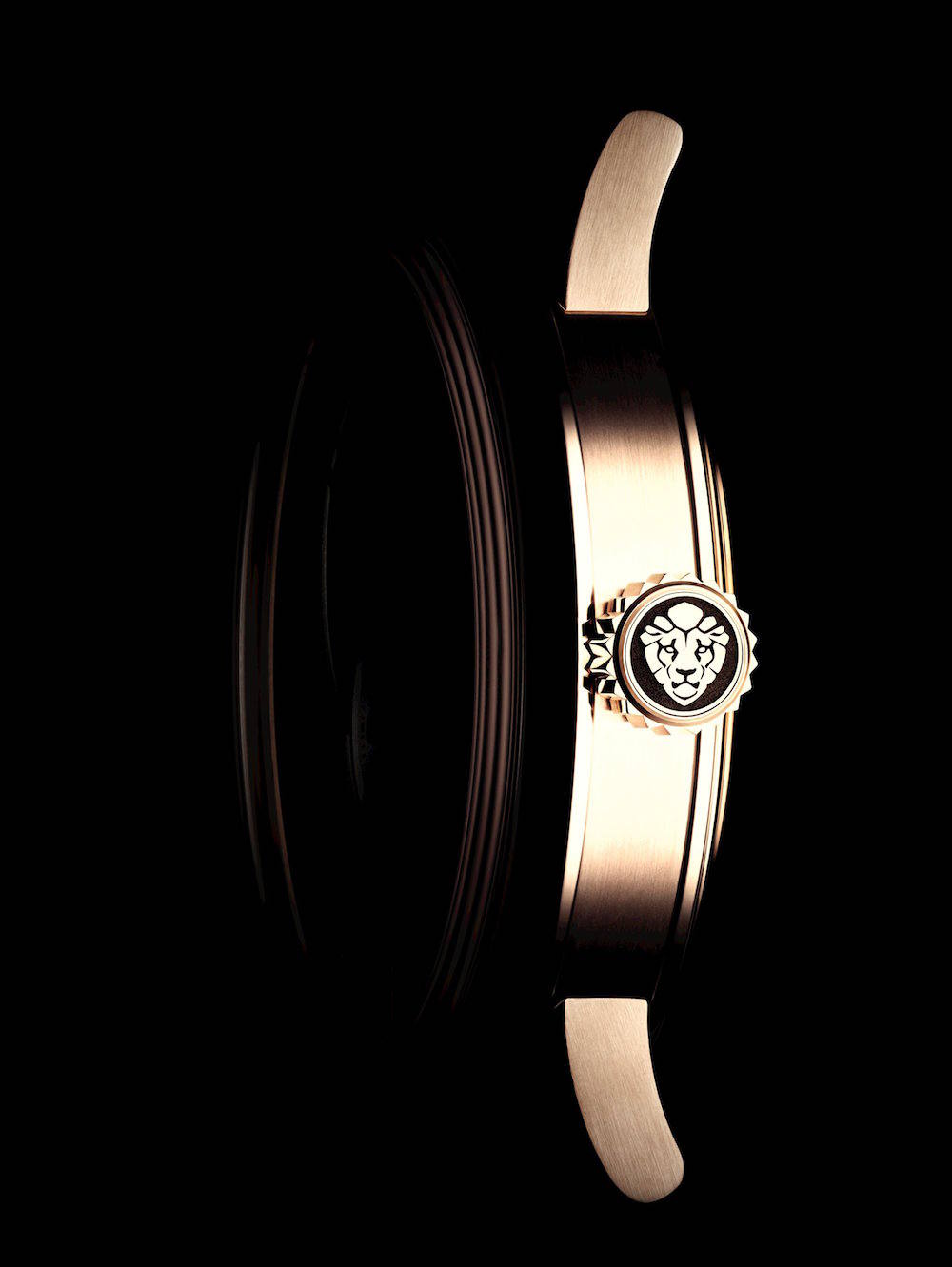 Monsieur de CHANEL watch profile 2