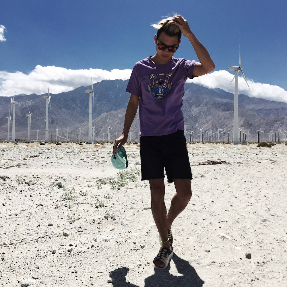 alexander liang palm desert