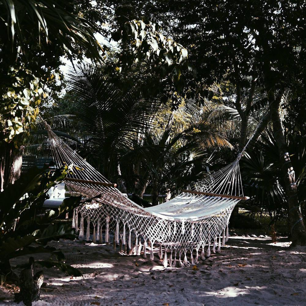 azul fives hammock
