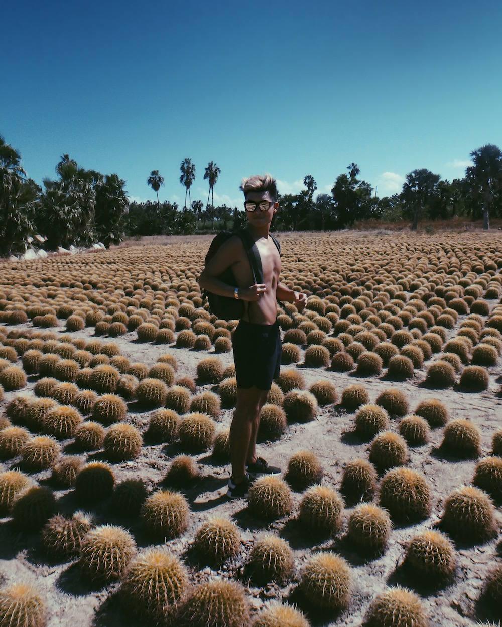 alexander-liang-travel-blog-cabo-mexico-08